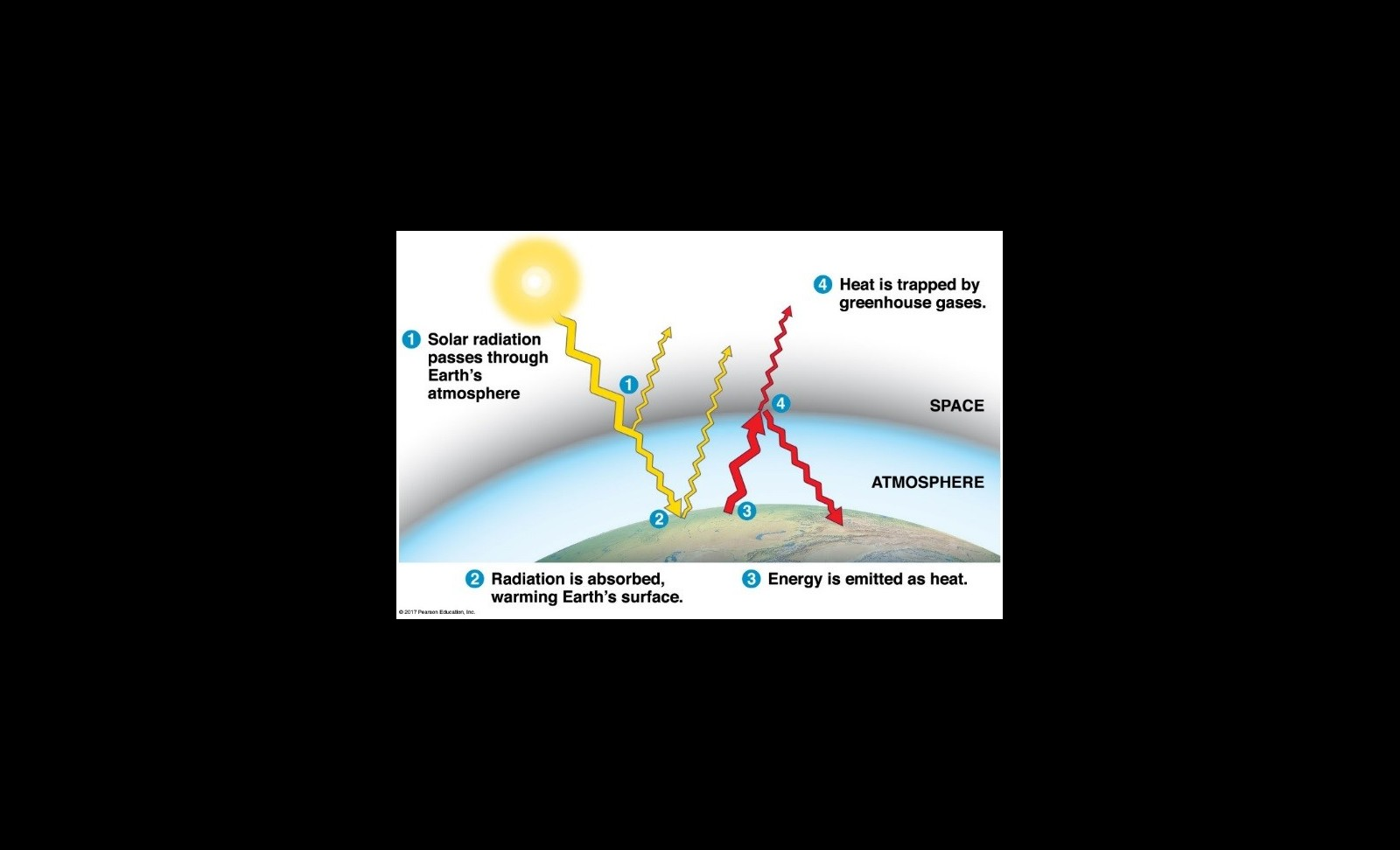 figure 1: effect of greenhouse gasses on global climate  source: campbell  biology (11th ed )